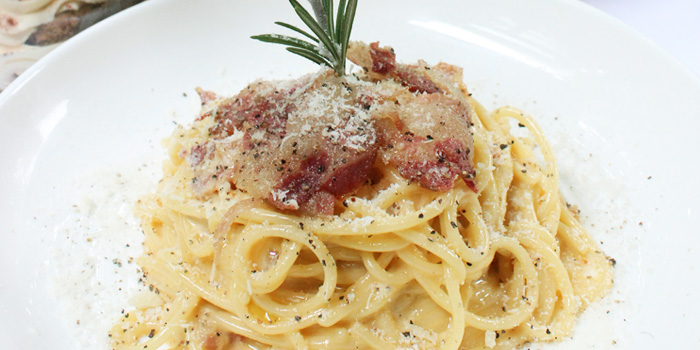 Creamy Pasta from Palatino Roman Cuisine in Former French Concession in Shanghai