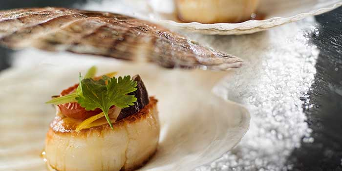 Scallops Asiate from Mr & Mrs Bund - Modern Eatery by Paul Pairet in Huangpu District, Shanghai