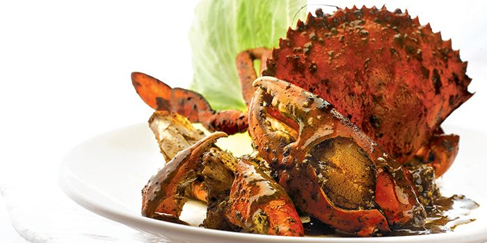 Signature Singapore Black Pepper Crab from JUMBO Seafood @ IFC in Pudong, Shanghai