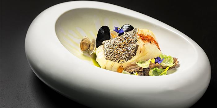 Cod Fish from FED Restaurant & Sky Lounge located in Luwan, Shanghai
