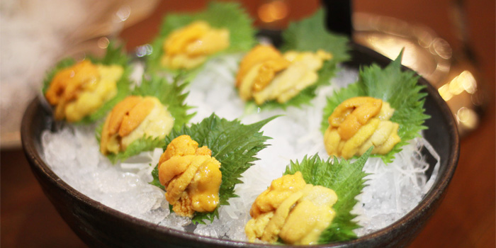 Sea urchin of Sakiton Grill & Sushi located at Shanghai Marriott Hotel on Daduhe Lu, Putuo, Shanghai