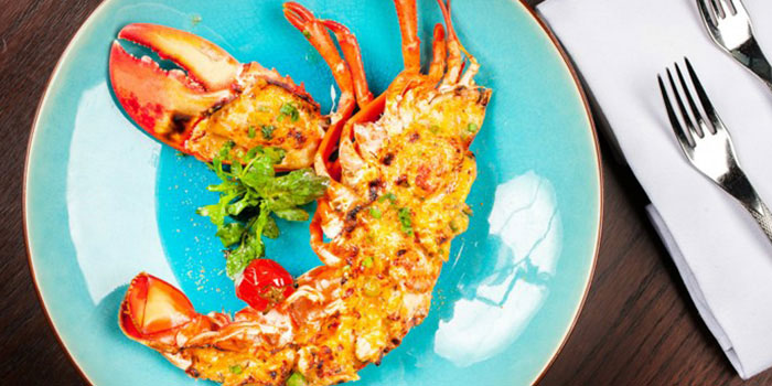 Baked-half-Maine-lobster,-risotto,-thermidor-sauce of POP American Brasserie located on Zhongshan Dong Yi Lu, Huangpu District, Shanghai, China