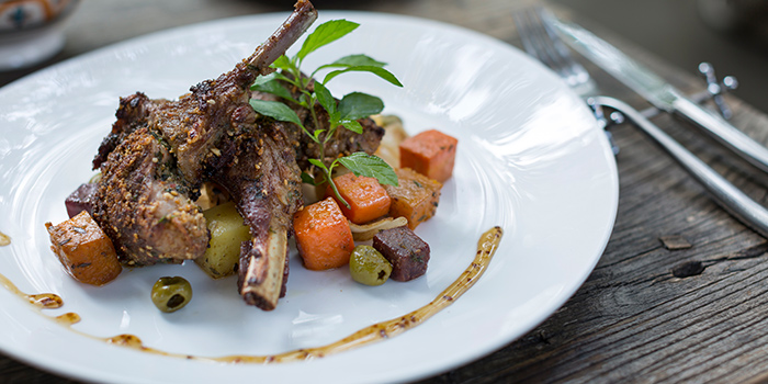 Egyptian Dukkah Crusted Lamb Chops from Ginger Modern Asian Bistro located in Xuhui, Shanghai