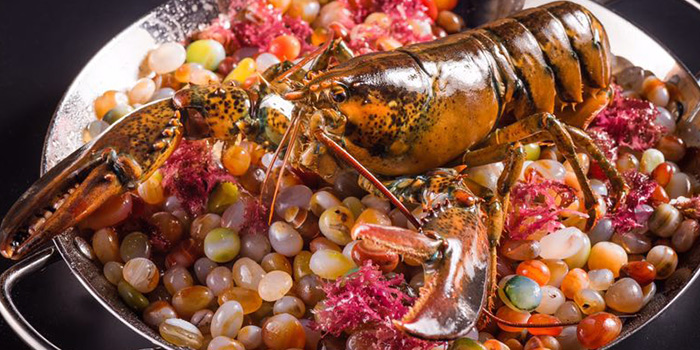 Fresh Lobster from Lunette by Amanda located in Luwan, Shanghai