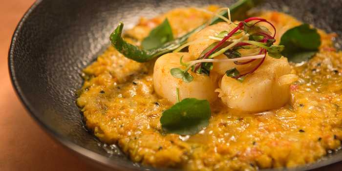 Scallops from Bombay Bistro located in Xuhui, Shanghai