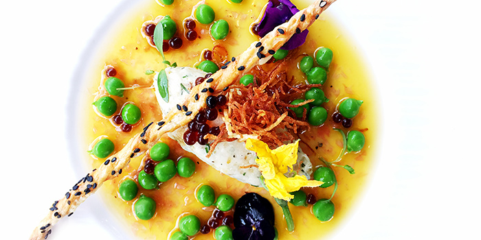Codfish from The Urban Harvest (Reel) located in Jing