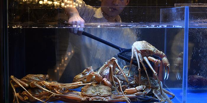 Seafood from Qimin Organic Hotpot Marketplace (Hengshan Lu) located in Xuhui, Shanghai