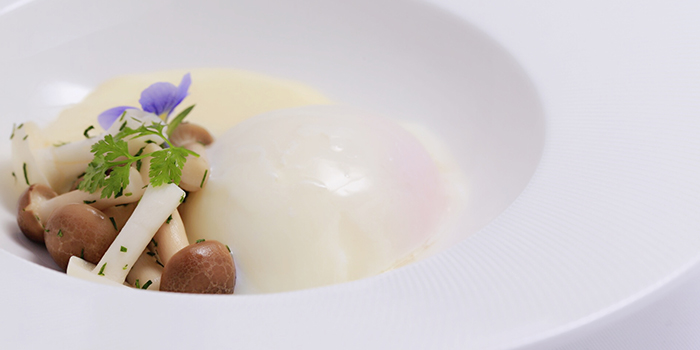 Eggs from Maison Papillon located in Xuhui, Shanghai