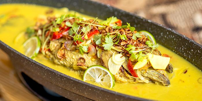 Curry from Bali Bistro & Balini Coffee located in Jing