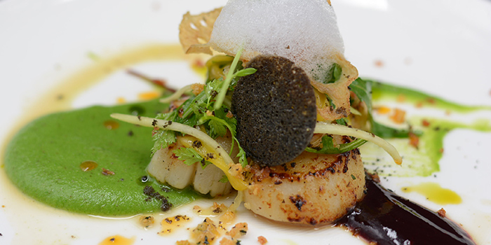 Scallop from Reve Kitchen located in Minhang, Shanghai