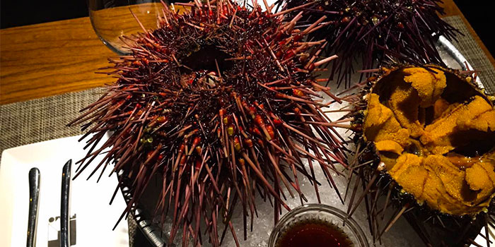 Dishes of Fumo Wine Bistro located on Xinle Lu, Xuhui District, Shanghai