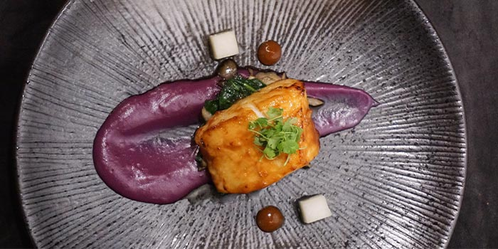 Miso cod of Light & Salt Daily in Jing