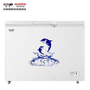 BC/BD-323NE 变温冰柜