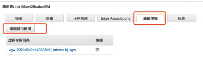 SD-WAN 和专线混合组网中的高可用设计(三)
