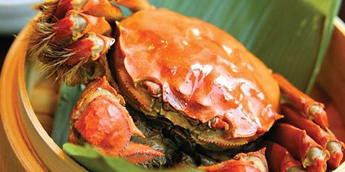 Crabs from Xindalu-China Kitchen in The Bund, Shanghai