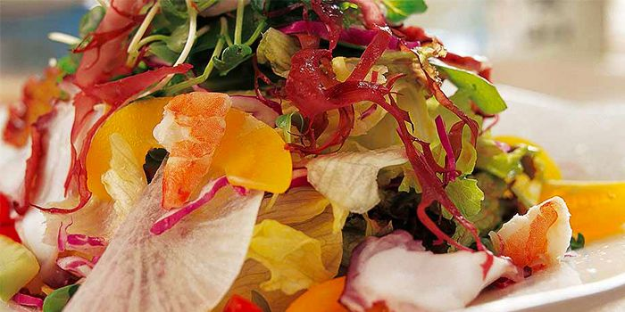 Hatsune Salad from Haiku @ Taojianglu in Former French Concession, Shanghai