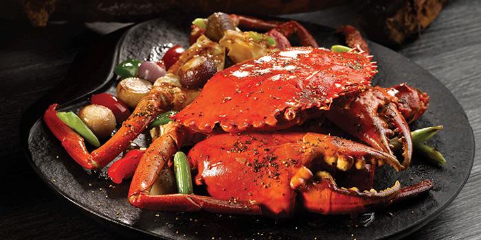 Black Pepper Crab from Crystal Jade Restaurant (Xintiandi) located in Huangpu, Shanghai