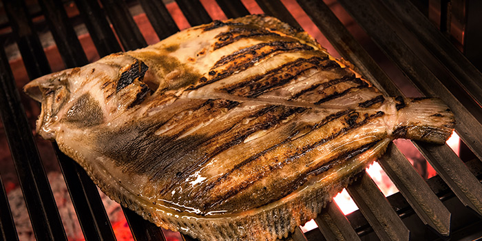 Grilled Fish from The Chop Chop Club   Unico located in Huangpu, Shanghai