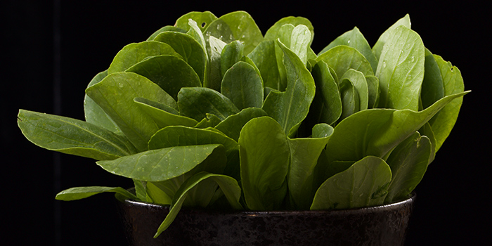 Spinach from Holy Cow (Tianshan Lu) located in Changning, Shanghai