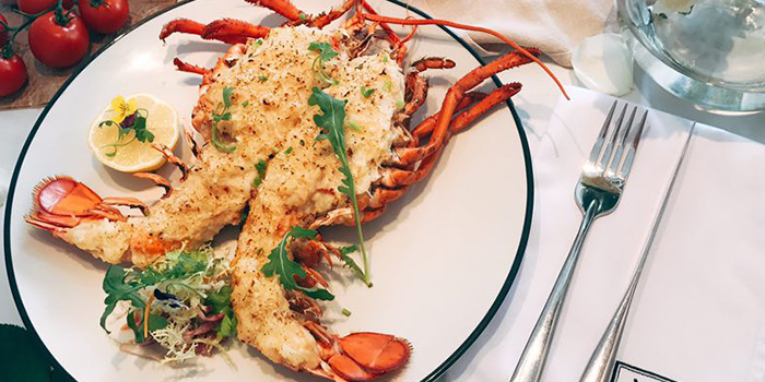 Lobster from Nico