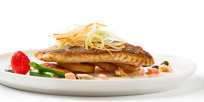 Fish from EQ located in Huangpu, Shanghai