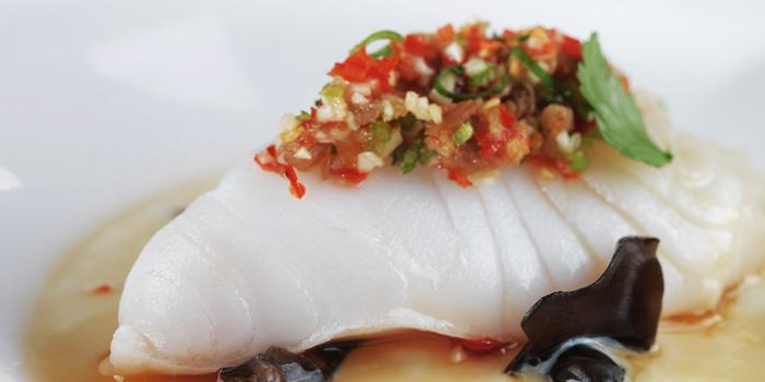 Fish from Jumbo Seafood (Shanghai L