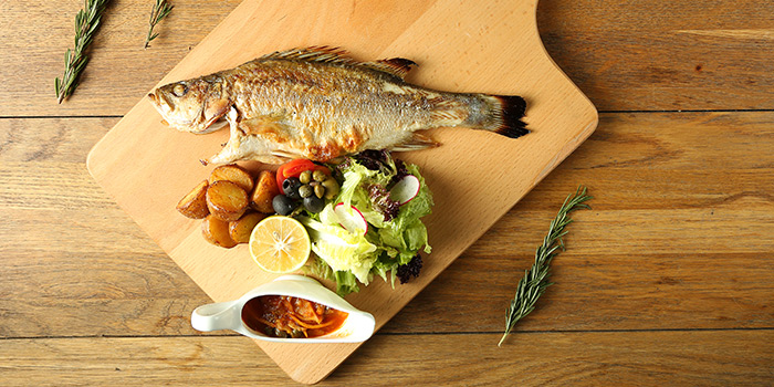 Fish of Himmelbush located in Minhang district, Shanghai