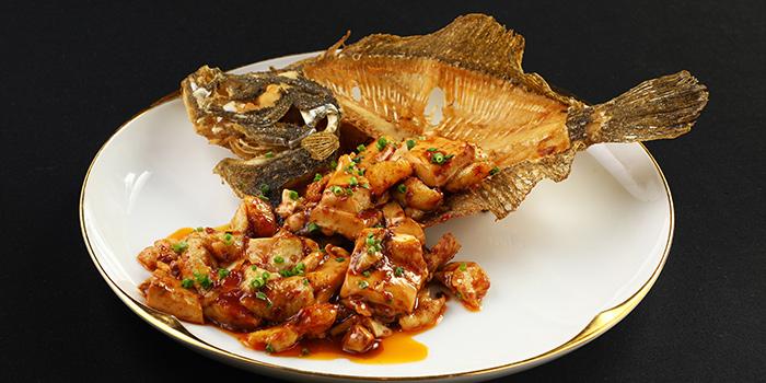 Fish of Lady Bund located in Huangpu, Shanghai