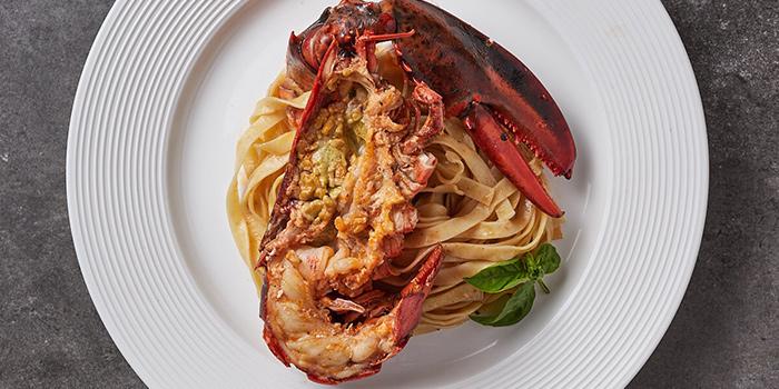 Lobster Pasta from Bianchi & Bella Ciao located on Jianguo Zhong Lu, Luwan, Shanghai