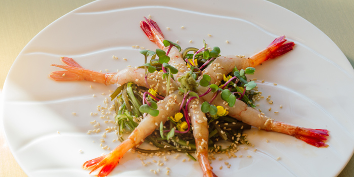 Appetizer of UMI Restaurant & Terrace Located in Jing