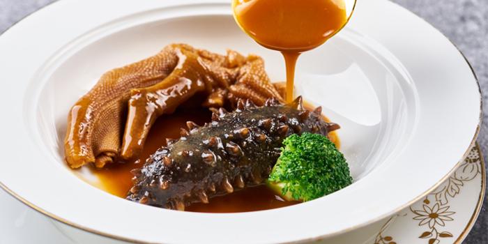 Sea-ear of Yuexuan Chinese Restaurant (Hilton Shanghai Hongqiao) located in Minhang, Shanghai