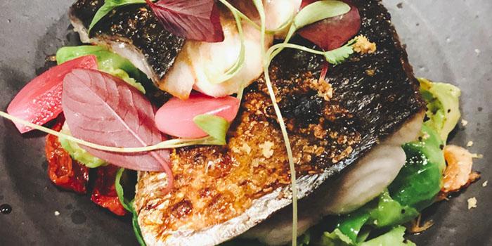 Fish of Azabu Dining located in Huangpu, Shanghai