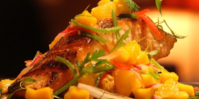 Salmon of MAYA in Jing