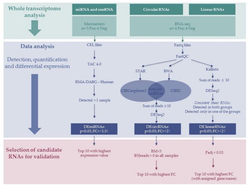 指出分析实验,数据分析工具,过滤器和候选者选择标准.png