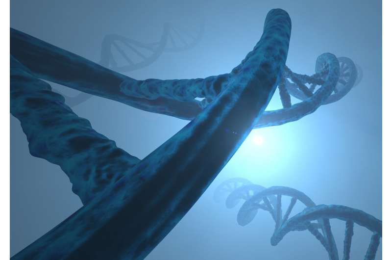 染色体如何进化以创造新的生命形式.png
