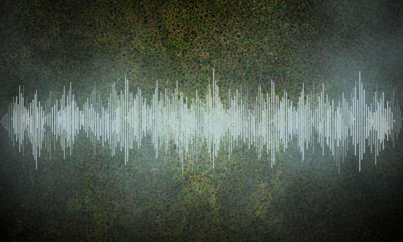 """麻省理工学院的物理学家在实验室中创造了一种完美的液体,并记录了这种""""完美流动""""的声音.png"""
