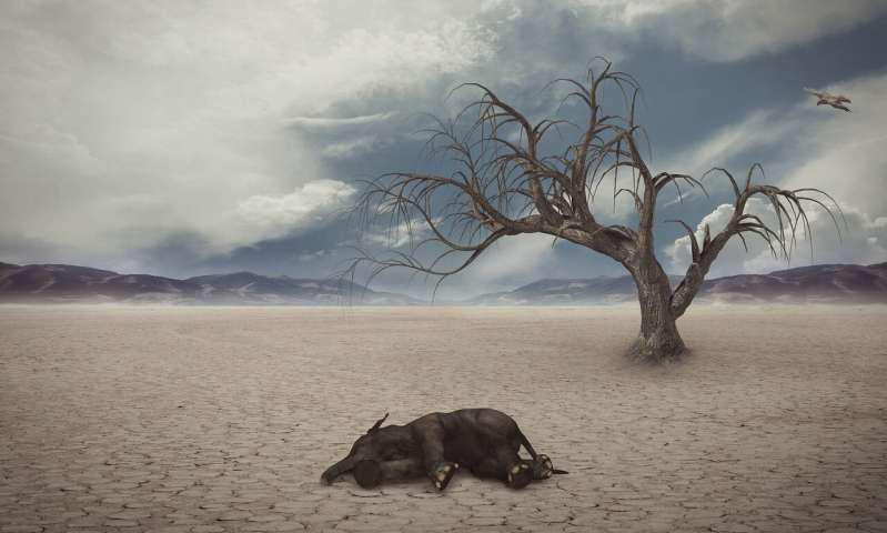 图像模拟陆地动物灭绝时环境景象.png