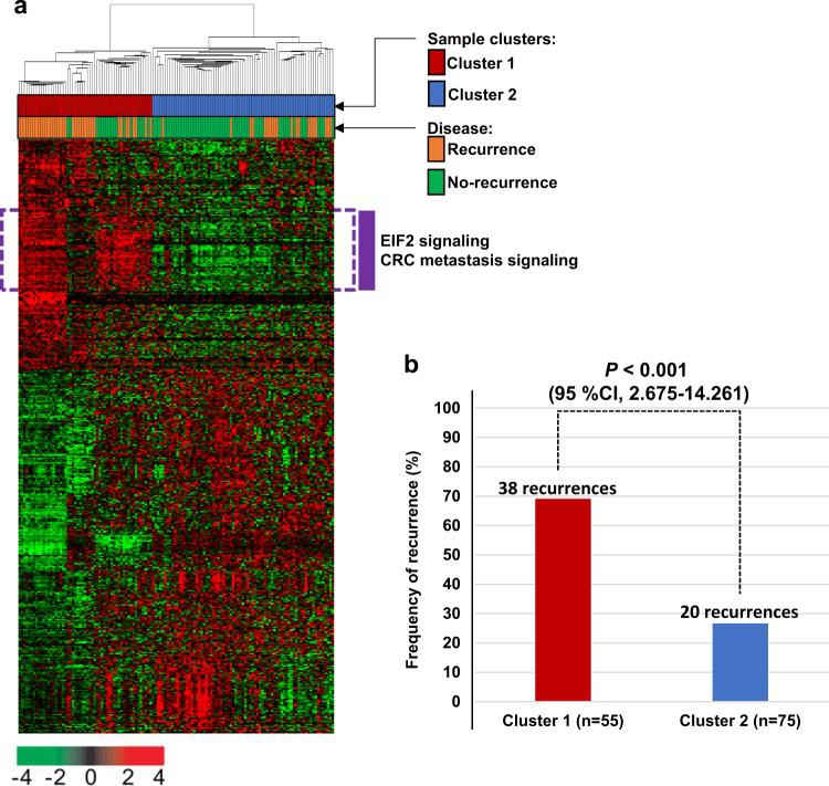 图1.AMC队列中系统性复发相关基因的基因表达谱(n = 130)。.png