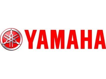 1雅马哈发动机(厦门)信息系统有限公司上海分公司
